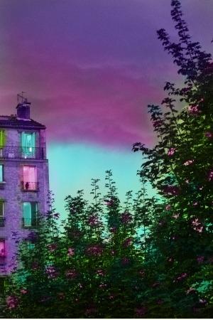 Crépuscule, 2018